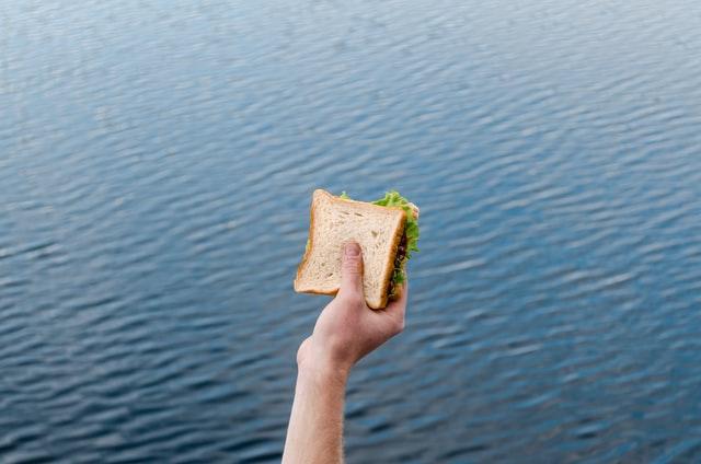 Semi Truck Microwave Option - Sandwich